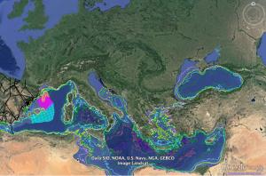 Alianza Mar Blava publicó en diciembre en su web un mapa interactivo en el que se reflejan todos los proyectos de exploración y explotación de hidrocarburos (petróleo y gas) que están actualmente en marcha en el área balear-levantino-catalana. Imagen: Aliança Mar Blava