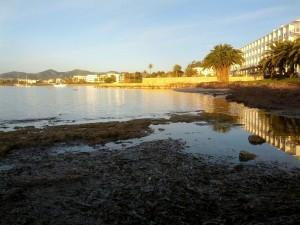 Fixau-vos en l'efecte de les minves de gener a la costa de davant ses Figueres (que deixa a la vista les roques habitualment submergides i la vegetació marina), en una foto feta davant dels varadors, des del camí que porta a la punta des Andreus. Foto V.R.