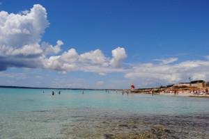 El presidente de la Asociación de Quiosqueros de Formentera ha señalado las ventajas de haber duplicado el plazo de las licencias de 4 a 8 años, algo que permite a los concesionario realizar mayores inversiones.