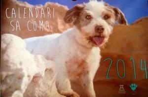 En la imagen, la portada del calendario con uno de los simpáticos inquilinos de Sa Coma.