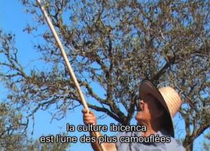 Un fotograma del documental 'Eivissa, terra endins', que es podrà veure el dissabte 22 de febrer a Canal 33.