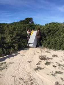 Tasques de neteja al Parc Natural de Ses Salines, a Formentera.