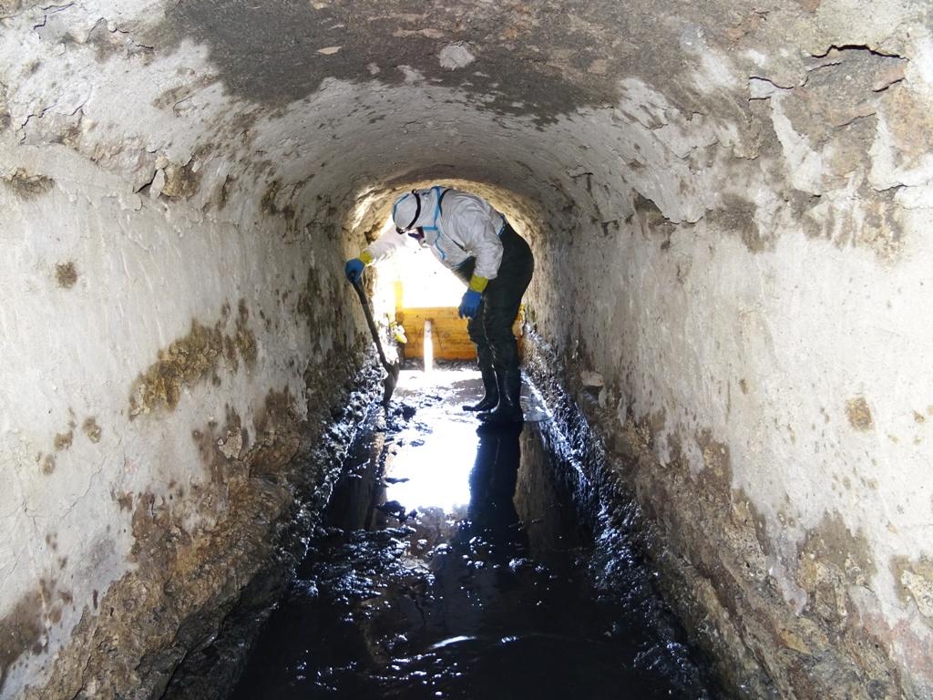Formentera limpia el canal de ses salines para preservar - Conservatorio de ibiza ...